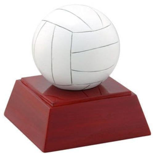 Volleyball Resin Volleyball