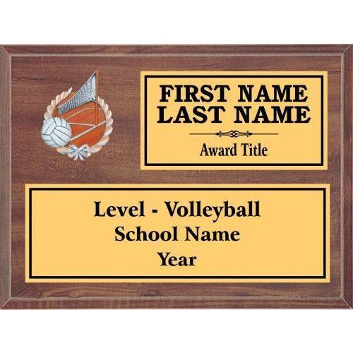 Volleyball Classic Cherry Wood Gold Plated Resin Icon Plaques Volleyball