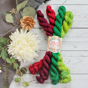 Home for the Holidays Mini Skein Pack