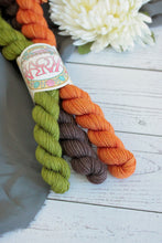 Little Acorn Socks Mini Skein Pack