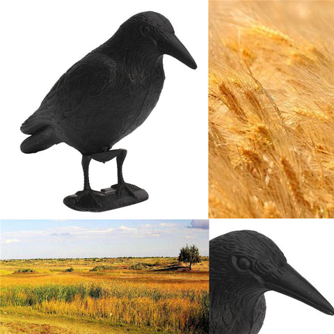 Crow Hunting Decoys