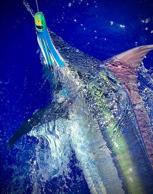 "Ali'i Kai Lures - Machine Gun Kelly Slant Face 12"" - Mahi Mahi - New-Big Game Lures Hawaii"