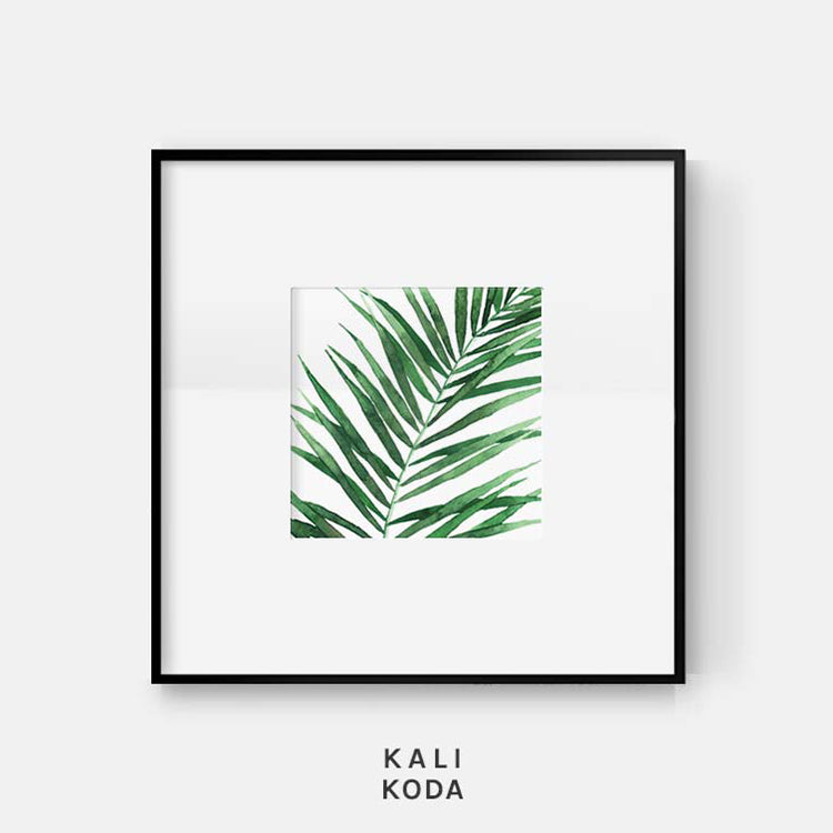 Acera Palm Series No. 1 Print