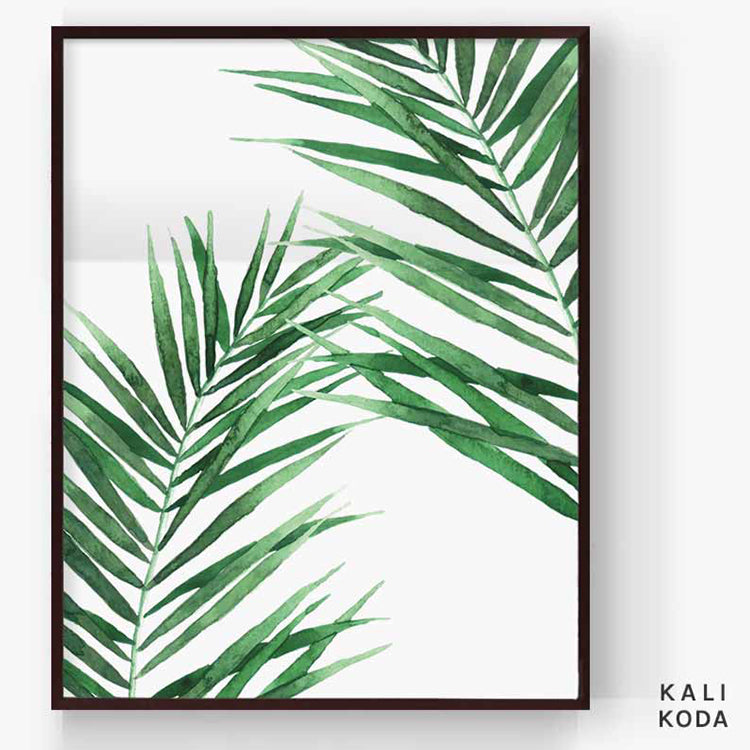 Acera Palm Series No. 2 Print
