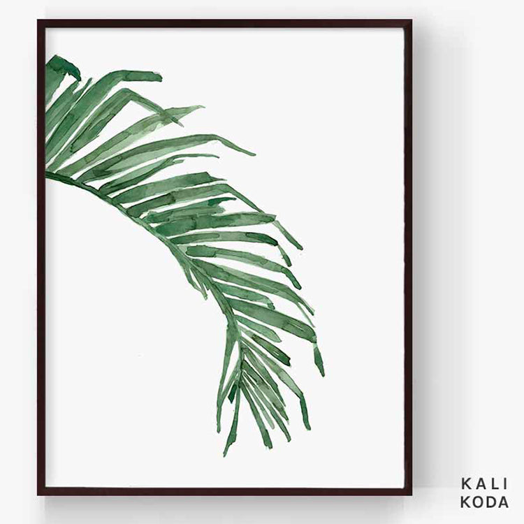 Acera Palm Series No. 3 Print