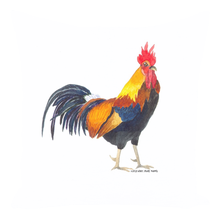 Summer Bay Farm Throw Pillows - Rocky the Rooster