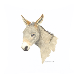Summer Bay Farm Throw Pillows - Duffy the Donkey