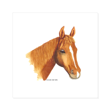 Summer Bay Farm Canvas Wall Art - Cinnamon the Horse
