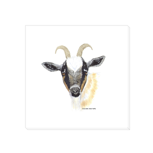 Summer Bay Farm Canvas Wall Art - Gilbert the Goat