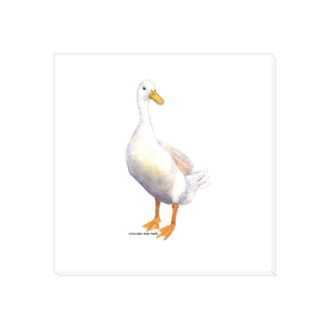 Summer Bay Farm Canvas Wall Art - Mrs. McQuacken the Duck