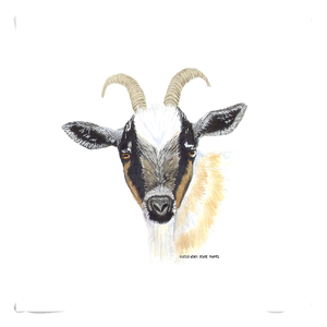Summer Bay Farm Throw Pillows - Gilbert the Goat