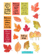 Summer and Autumn Leaves Stickers - Buy One Get One Free
