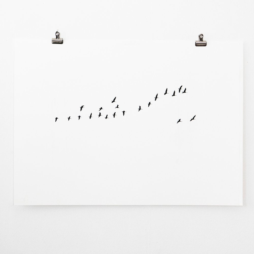 Birds Migration – screen print