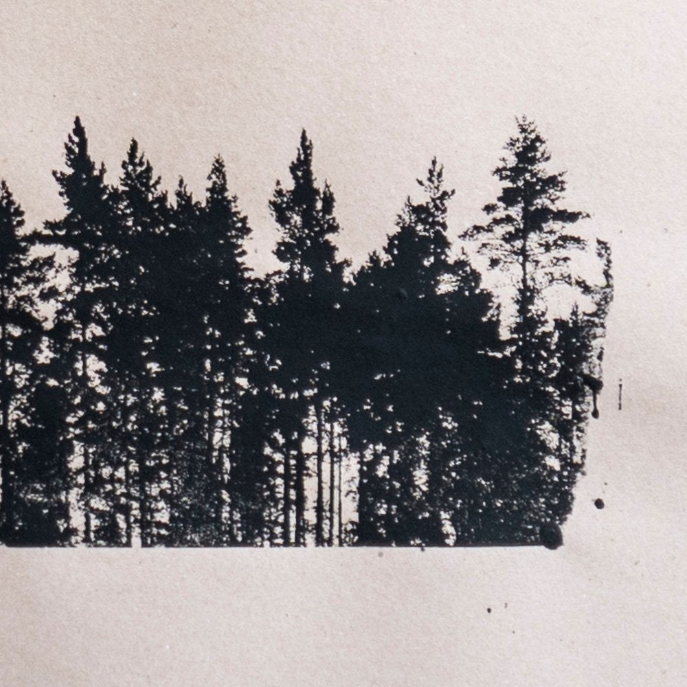 Detail of pines on brown paper.