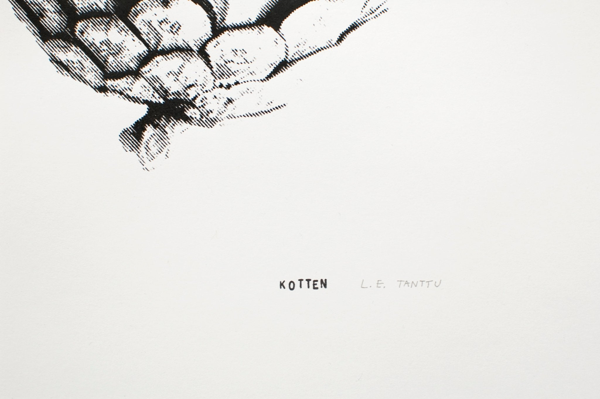 Kotten – M – screen print