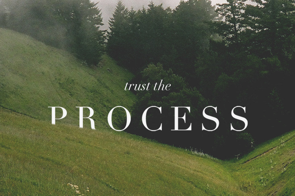 Weekly Wordsmith: Trust The Process