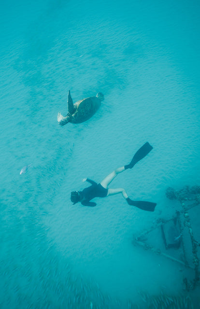 Looking down on a free diver swimming with a large green sea turtle.