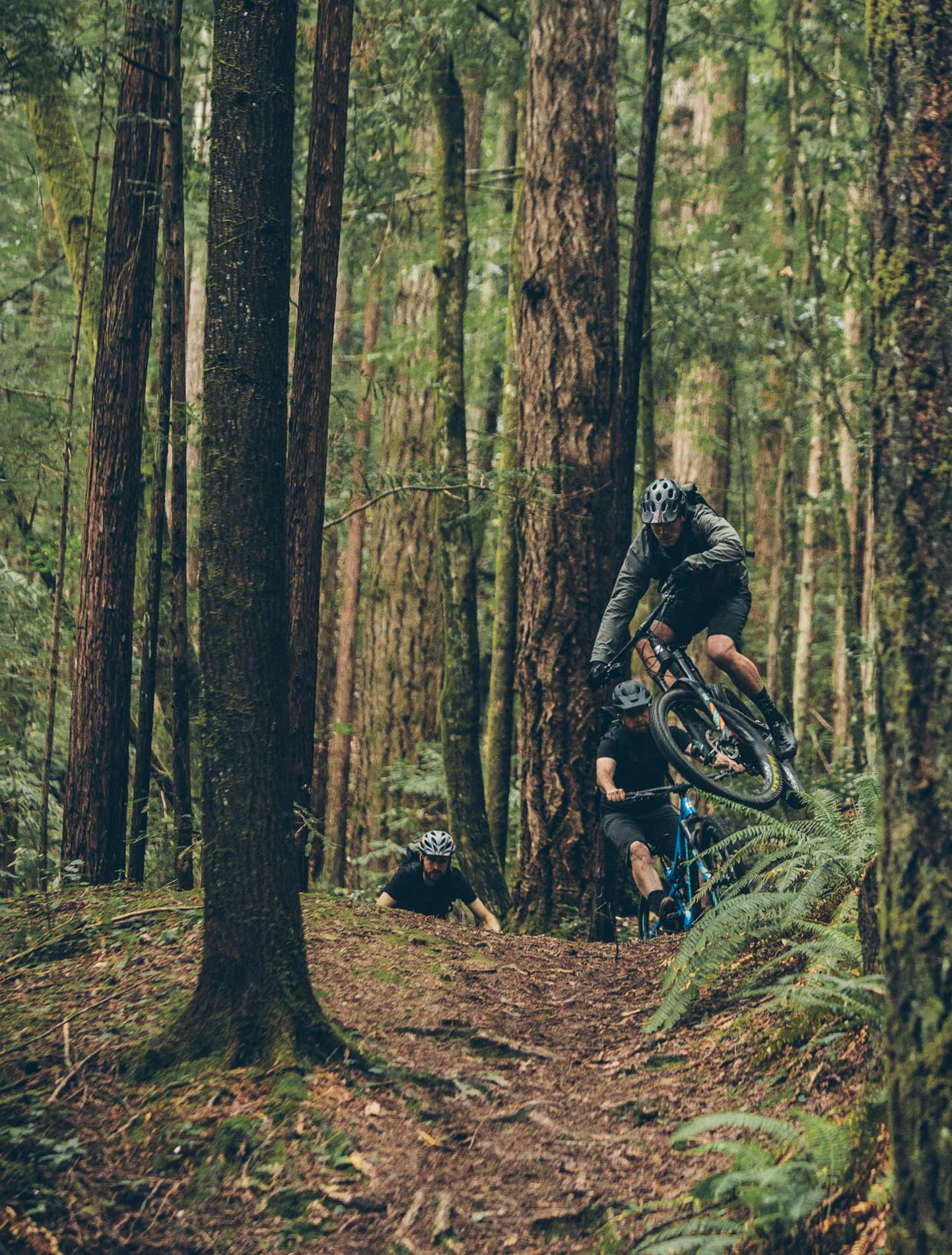 Riders take jumps through the woods on bike.