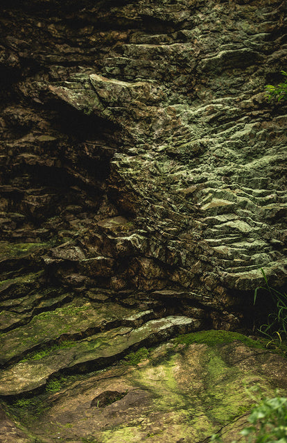 Moss-covered rock.