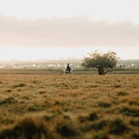 The Florida Cowboy by Corey Woosley - featured image