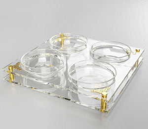 Acrylic 4 Sectioned Dip Dish With Gold Plates