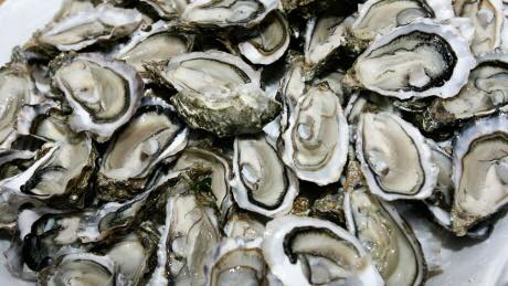 Oyster Singles ~ Event Catering
