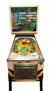 Surf Champ Flipper