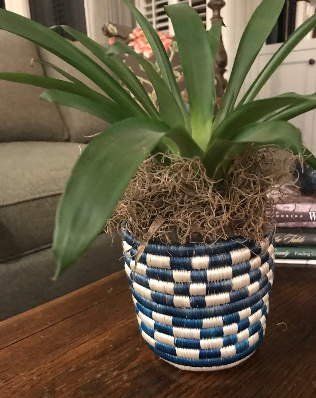 African Basket Flower Pot