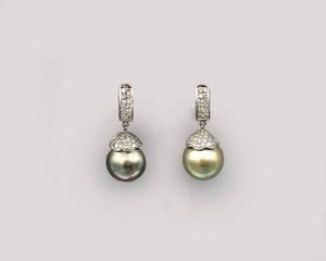 Golden/Green South Sea Pearl Earrings
