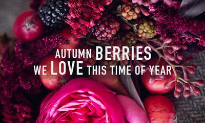 THE SCARF ROOM BLOG : AUTUMN BERRIES