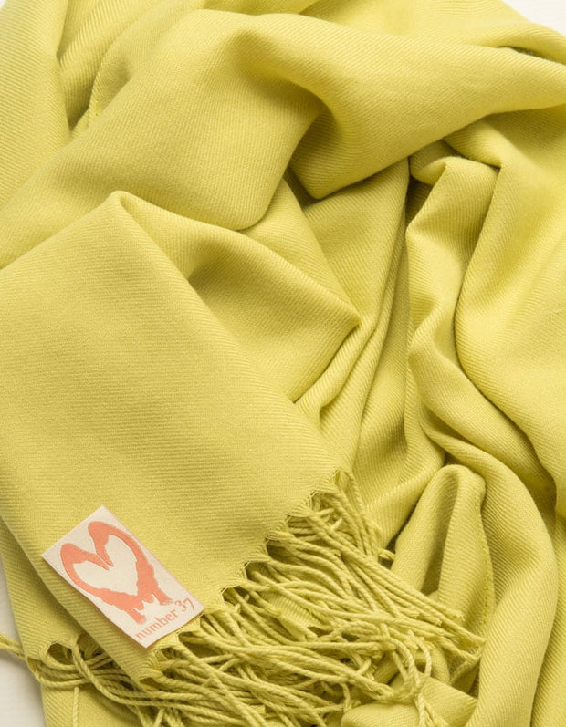 an image showing a close up of a lime green pashmina