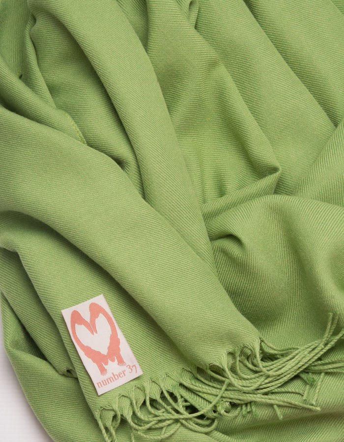 an image showing a close up of a pistachio green pashmina