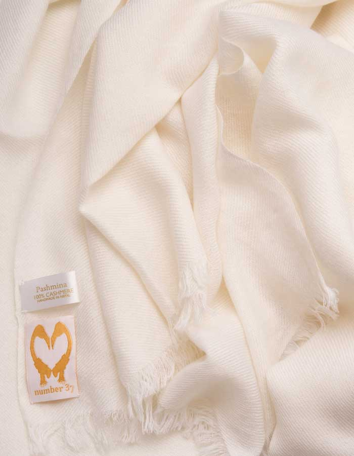 an image showing a pure cashmere pashmina scarf in white
