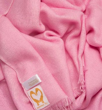 an image showing a pure cashmere wedding pashmina in Pink close up