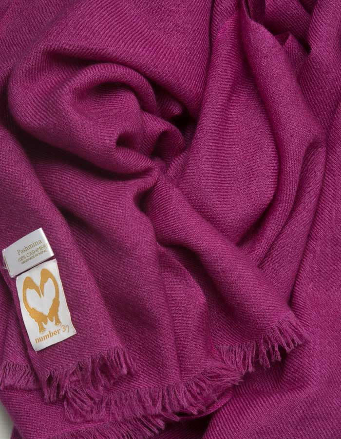 an image showing a pure cashmere pashmina scarf in purple