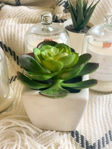 Succulent Desk Plant (Artificial)