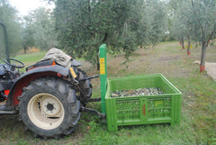 tractor and olives in crates (vasca)