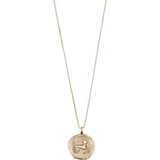 Horoscope Necklace, Capricorn