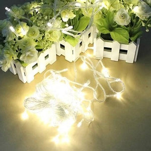 Decorative String Light for Home Garden (10m 100LEDs)