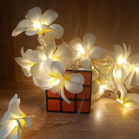 Frangipani LED String Light