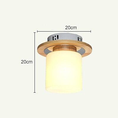 Modern Led Ceiling Light