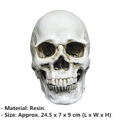 Raven Skeleton (100% Plastic)-Non Electric Home Decor-2-Khadiza Electricals