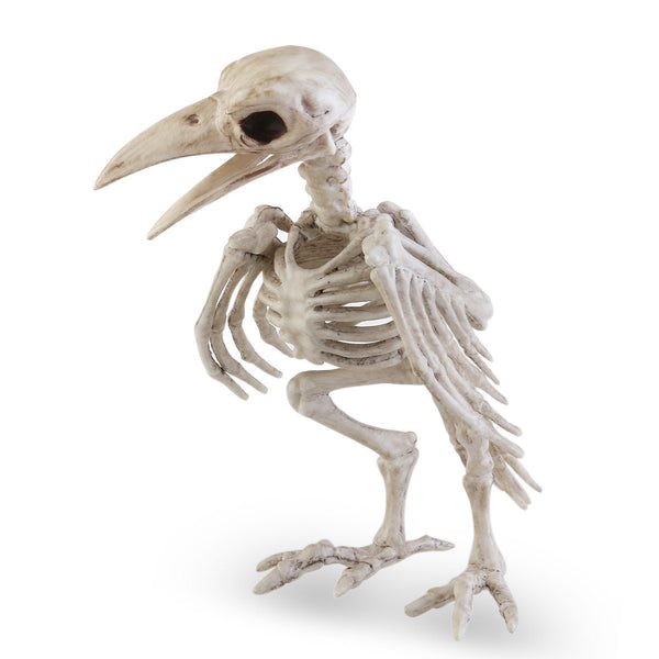 Raven Skeleton (100% Plastic)-Non Electric Home Decor-[variant_title]-Khadiza Electricals