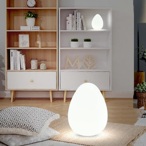 Egg Shaped Floor Lamp with Remote Control