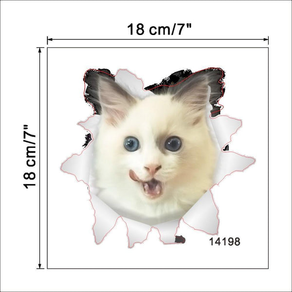 Cat & Dog 3D Wall Sticker-Non Electric Home Decor-[variant_title]-Khadiza Electricals