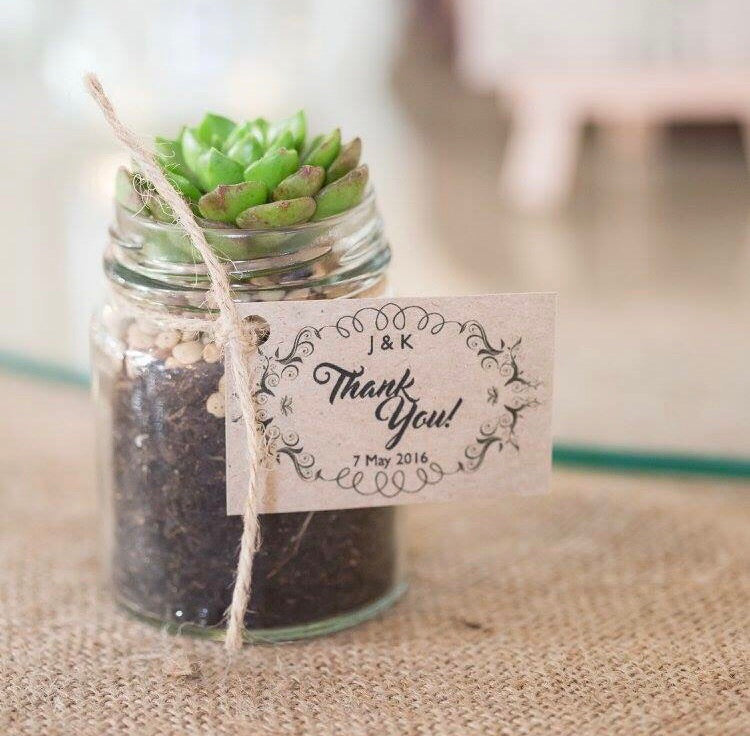 Succulent Favors - Small