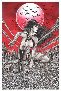 Vengeance of Vampirella 1 Steven Butler Virgin Variant Port City Comics Exclusive (Pre-order)