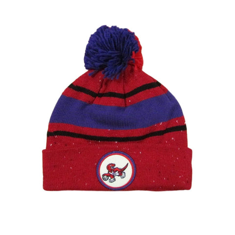Toronto Raptors Splash Paint Basketball Pom Beanie Mitchell & Ness