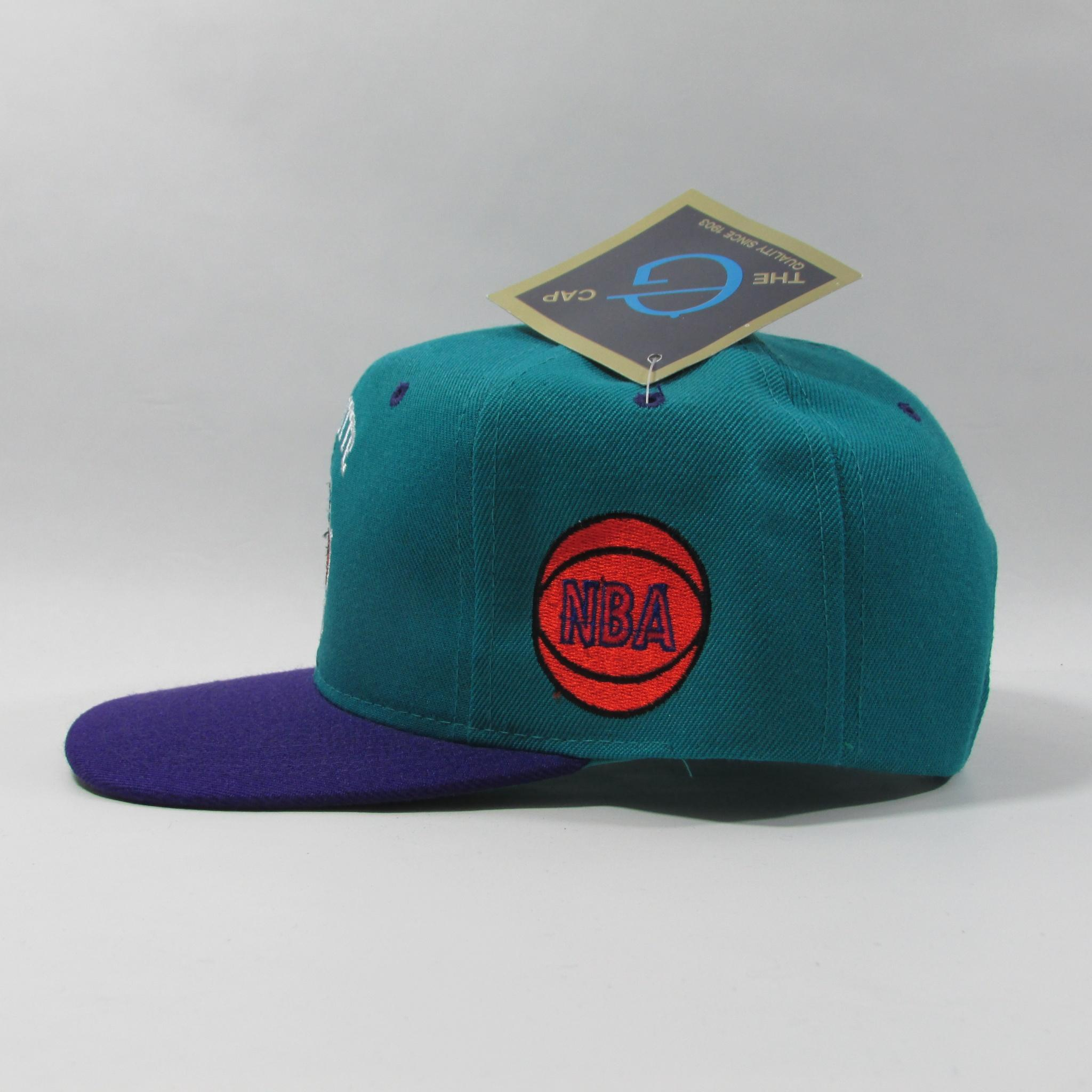 Charlotte Hornets Deadstock NBA Basketball Snapback Hat The G Caps