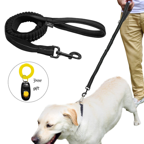 High Quality, Absorbant Dog Leash with Free Clicker